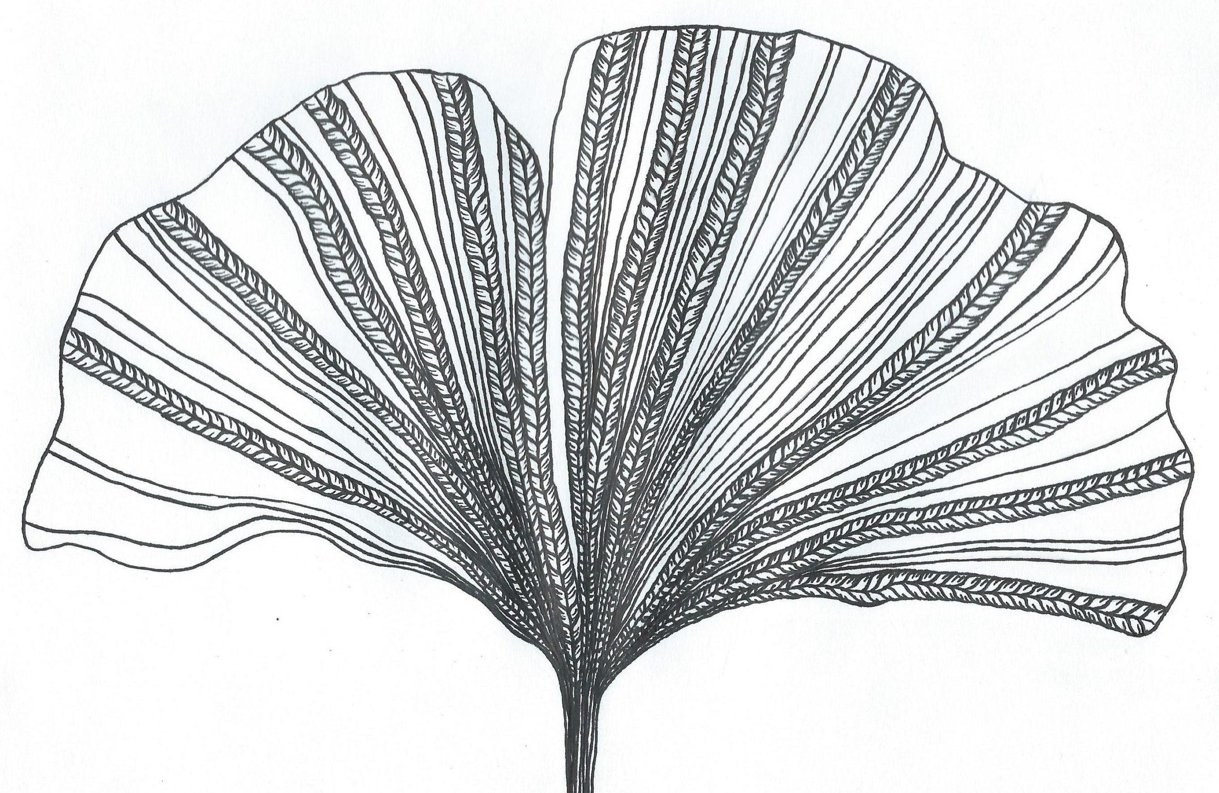 logo charlotte tricote